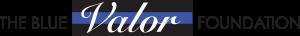 blue-valor-logo