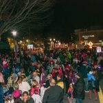 Baltimore County Tree Lighting
